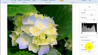 How to edit photos with Windows Live Photo Gallery