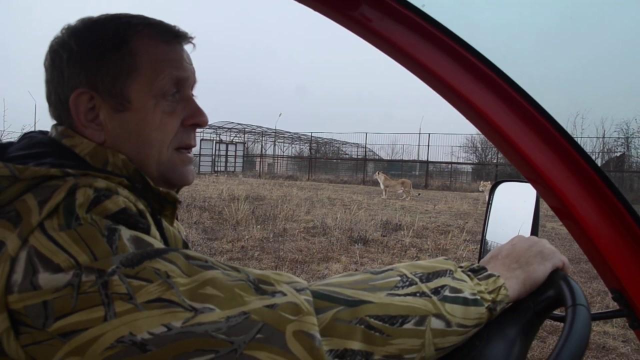 Состоялся суд по УГОЛОВНОМУ ДЕЛУ Ольги Соломиной ! Лев почувствовал алкоголь !