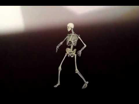 squelette qui fait peur - youtube