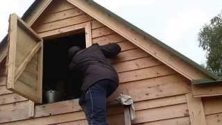 выселение ос из дачного домика