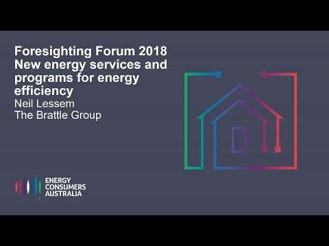 Neil Lessem, The Brattle Group - New energy services and programs for energy efficiency