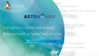 как узнать серийный номер флешки (usb накопителя)  в Linux