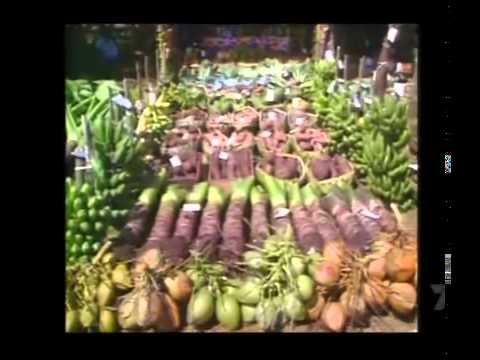 Kingdom of Tonga documentary in Vava'u in the 90's