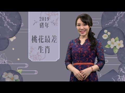 雲文子   豬年運程2019!桃花運最弱生肖(屬豬、屬虎、屬兔、屬蛇)詳解   ELLE HK