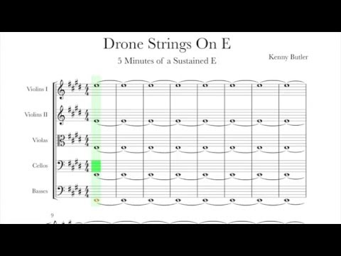 Drone Strings On E - Intonation for Violin, Viola & Cello
