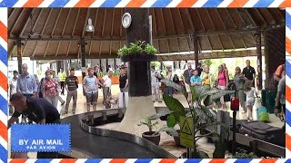 Koh Samui International Airport - Arrivals area including baggage claim and airport transfer