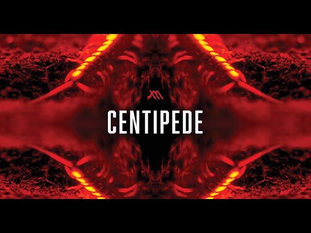 MUTUM / CENTIPEDE (Official Video)