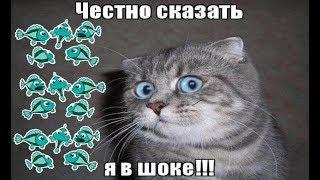 VLOG - Речные рыбки появились в банке! КАК???(, 2018-05-23T10:57:09.000Z)