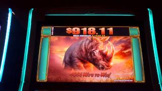 Raging Rhino Progressive Win (really short video - explanation below)