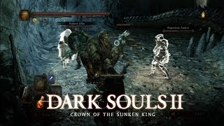 Outnumbered - Dark Souls II: Crown of the Sunken King - Gameplay