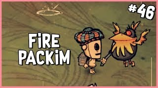 🐷 Fire Packim & Building a Tar Extractor   Don't Starve Shipwrecked Gameplay   Part 46