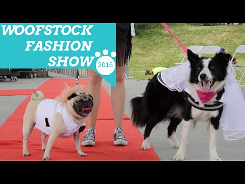 Best Dressed Dogs at Woofstock 2016 Fashion Show (Day 1)