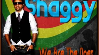Watch Shaggy We Are The Ones video