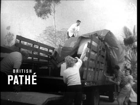 Homes Burn In Los Angeles Fire (1964)