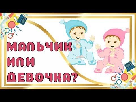 Мальчик или Девочка?! ТОП 100 СПОСОБОВ и ПРИМЕТ на Определение