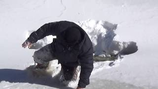 Falling through the ice on a remote snowshoe expedition!
