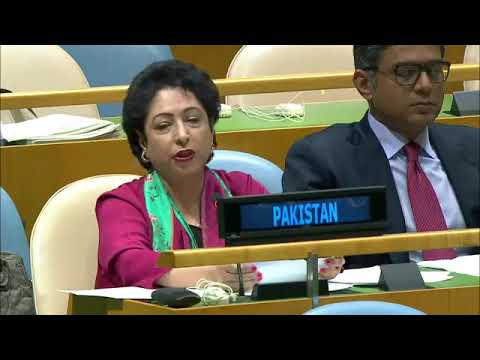 Pakistan Quotes Arundhati Roy To Lash Out At India At UNGA-24 Sept 2017
