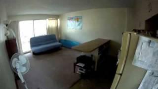 711 Kamuela Ave. Apt 203 rental