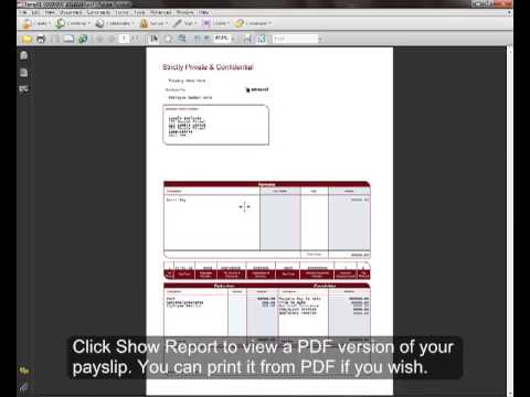 How to access your electronic payslips