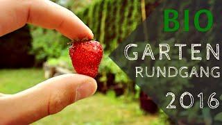 DIY: Gartenrundgang 2016 | BIO-GARTEN | Hochbeete |  1. Erdbeere | TOMATE |  Paprika | Max GREEN