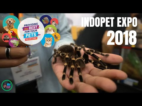 Indo Pet Expo 2018 Indonesian Convention Exhibition