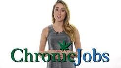 Corvallis Cannabis Jobs