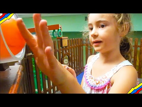 THINGS TO DO IN FLORIDA WITH KIDS | Explorations V Children's Museum // Lakeland, Florida