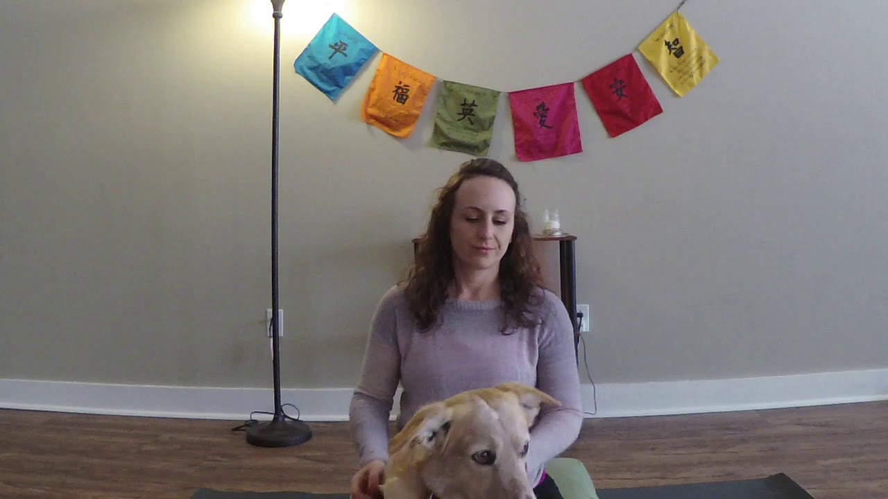 Cultivating Compassion:  A Loving Kindness Meditation for Stressful Times