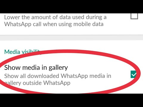 Whatsapp ||Fix Media Visibility Not Showing || And Use Show Media in Gallery outside Whatsapp