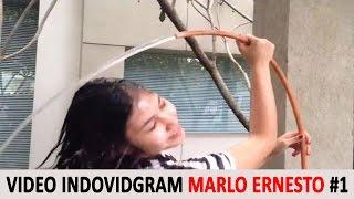 Video Kompilasi Marlo Ernesto Terlucu di Indovidgram #1