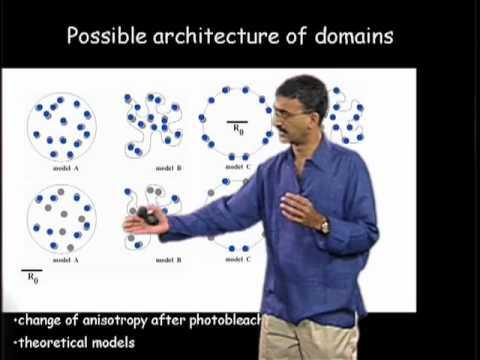 Satyajit Mayor (NCBS) Part 2: Looking for Functional Rafts in Cell Membranes