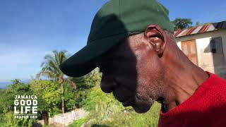 JAMAICA GOOD LIFE - EP133 - Land Business and Farming in Manchester