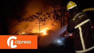Important feu dans la Forêt de Sénart : plusieurs hectares détruits (10 septembre 2018,  France)
