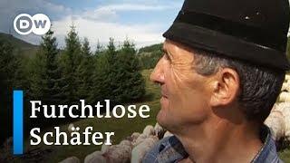 Rumänien: Furchtlose Schäfer | Europa aktuell
