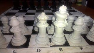 2 teknik catur dengan skakmat terindah