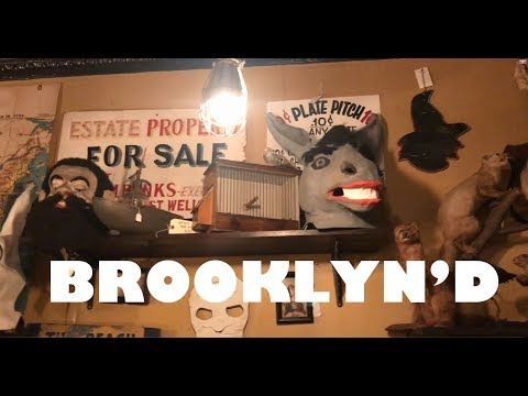 BROOKLYN'D Episode 4 - Record Store shopping in Brooklyn with vinyl record haul !