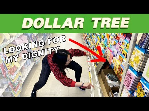 Exposing DOLLAR TREE Employee Hacks