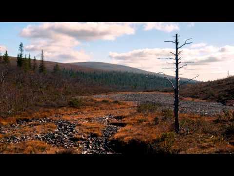Urho Kekkonen National Park - Autumn