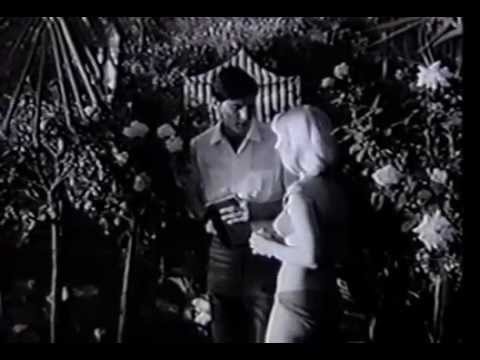 Psychopathia Sexualis aka On Her Bed of Roses (1966) Full Movie
