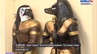 """Выставка """"Египетские мумии. Путешествие в вечность"""""""