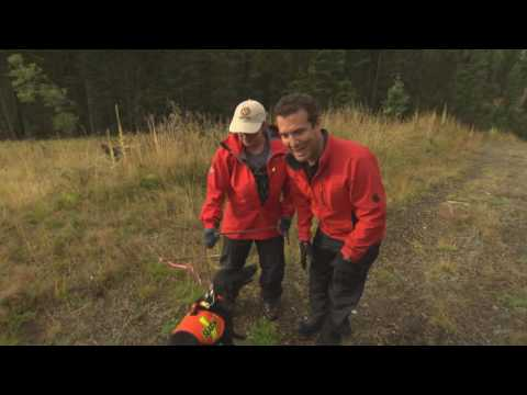 Rick and Search and Rescue Dogs