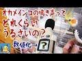 オカメインコの鳴き声を騒音計で測ってみた の動画、YouTube動画。