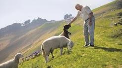 Monte Generoso: Where sheep predicted the weather | Ticino, Switzerland