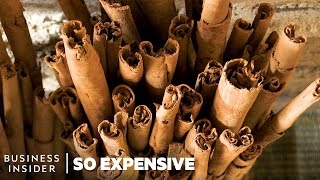 Why Ceylon Cinnamon Is So Expensive | So Expensive
