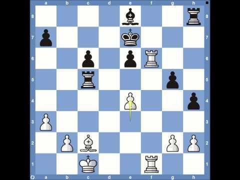 2013 World Chess Championships Carlsen vs Anand - Game 5