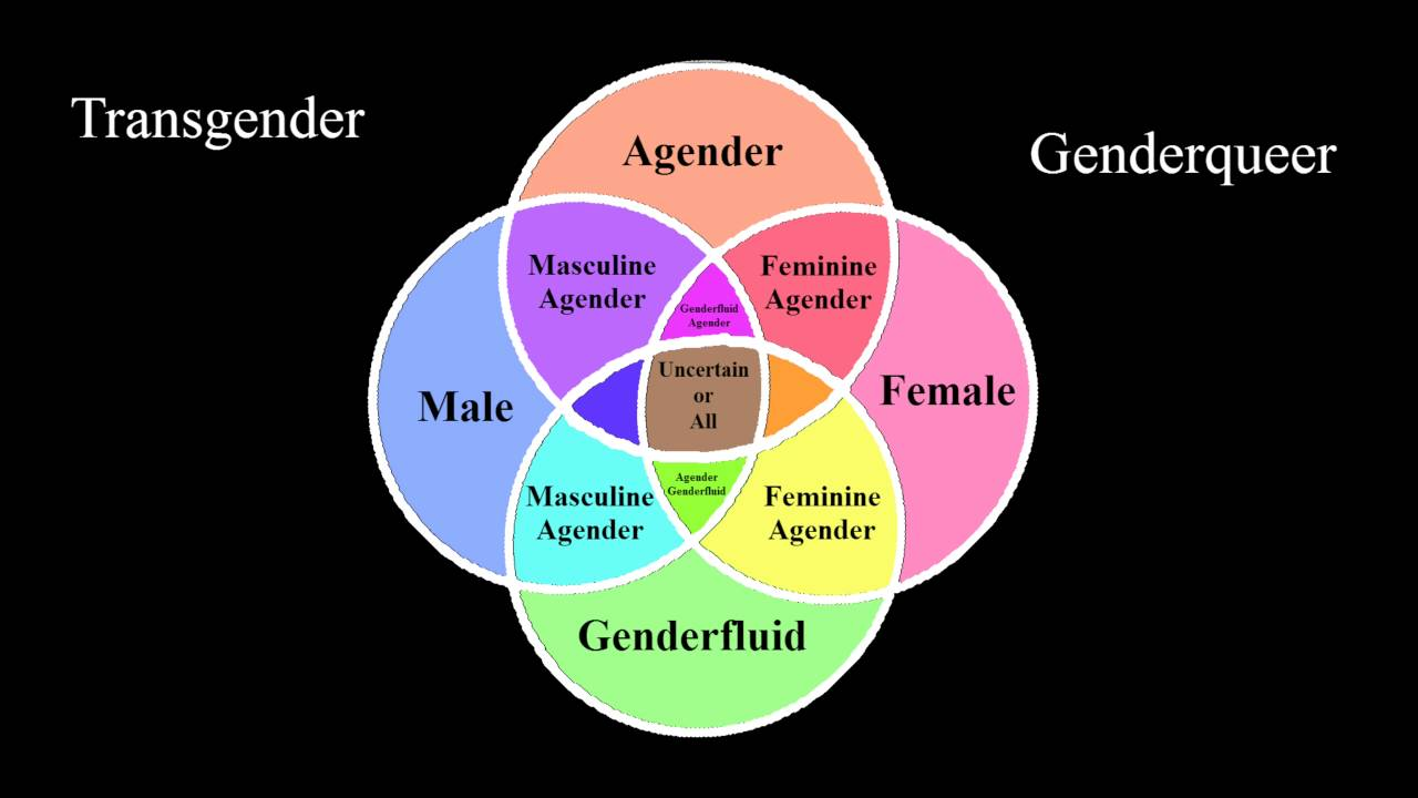 Gender Spectrum Identities List - YouTube