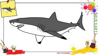 shark drawing easy cartoon draw drawings step beginners paintingvalley children