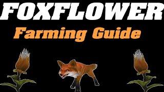 Legion: Foxflower Farming Guide   Herbalism  