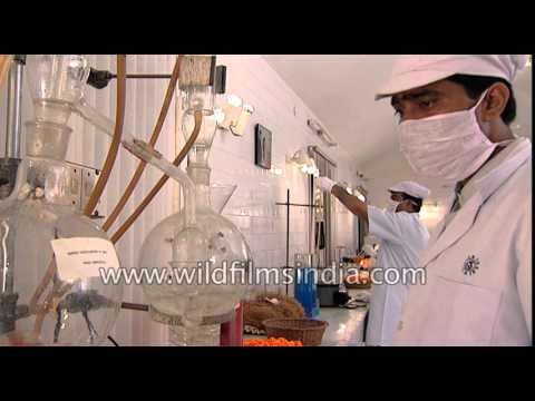 Making of Shahnaz beauty products at Shahnaz Herbal Farm in India