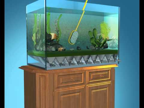 Self cleaning aquarium youtube for Clean fish tank